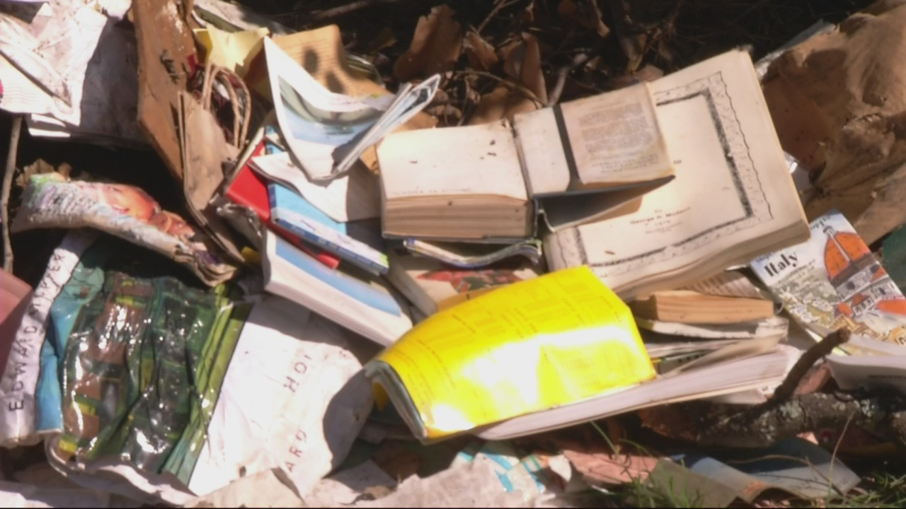 Task force wants to crack down on illegal dumping in Bethlehem area