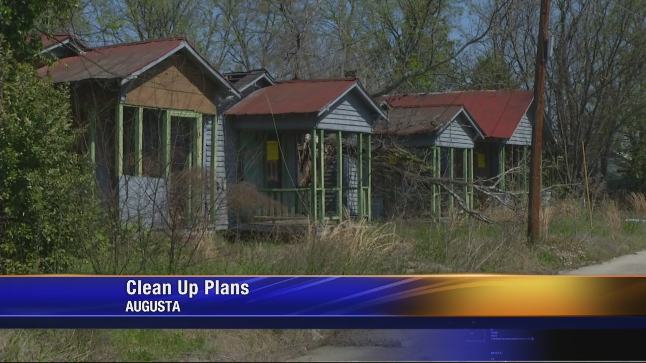 Commissioner calls for more money to battle blight