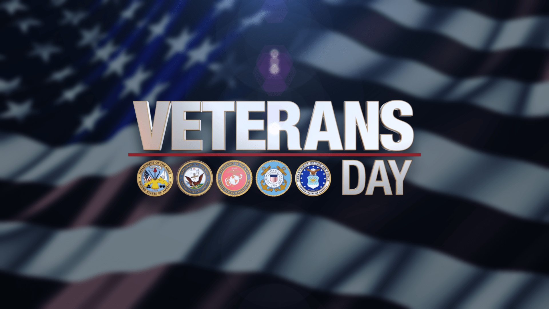 Veterans-Day-Graphic_85849