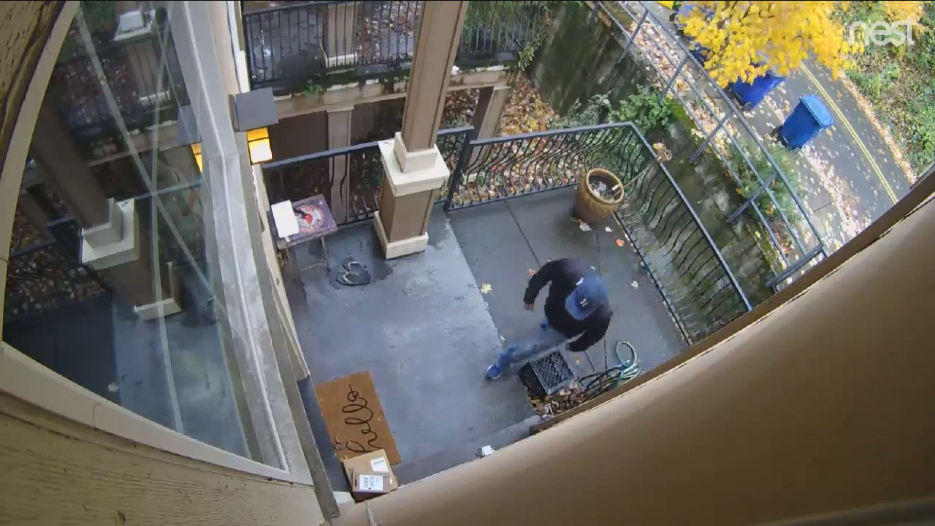 PORCH PIRATES2_1544673177370.jpg.jpg