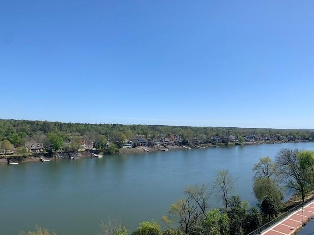 savannah river 1_1554999740273.jpg.jpg