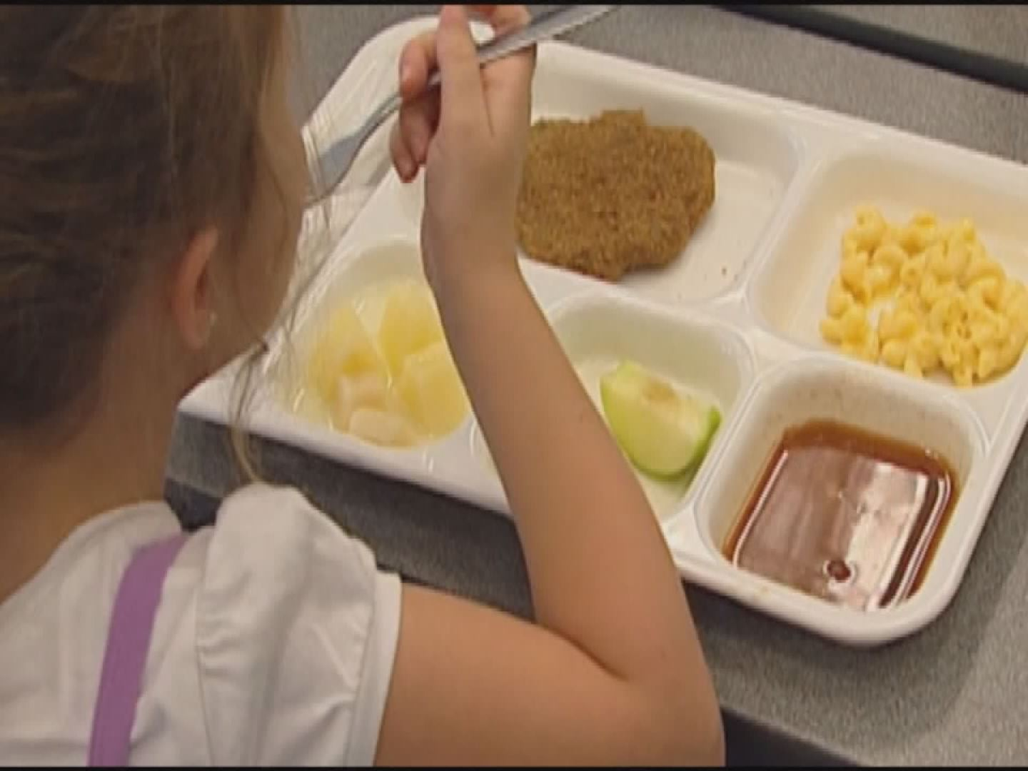 SCHOOL LUNCH_100036