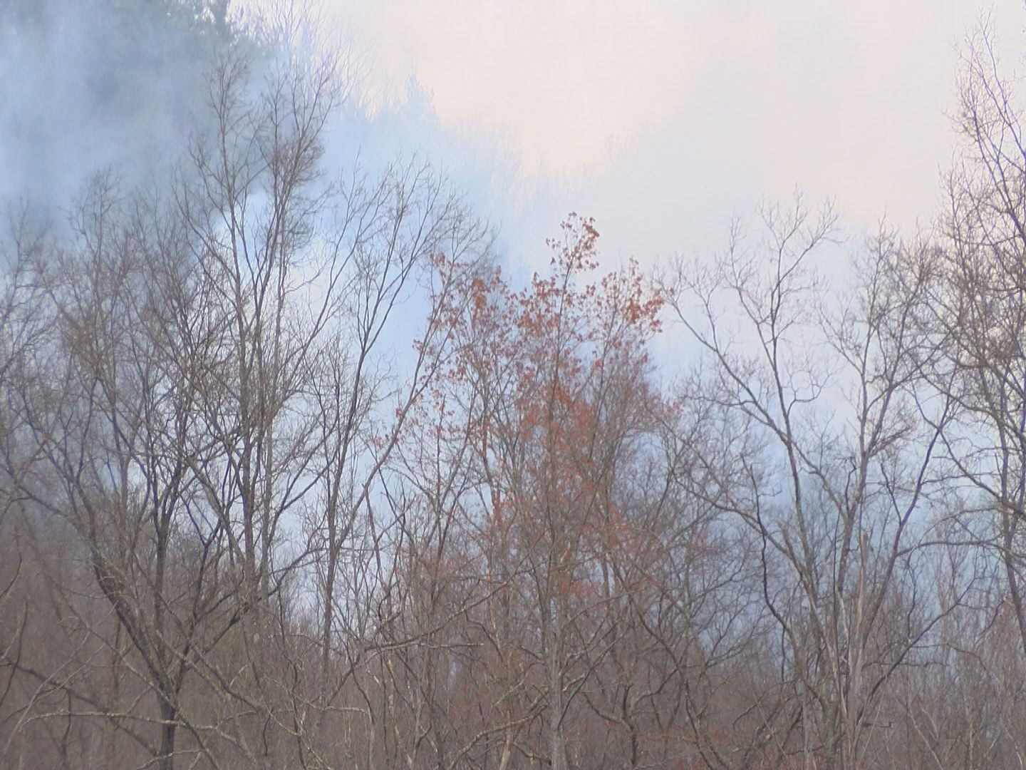 UNICOI WILDFIRE_132418