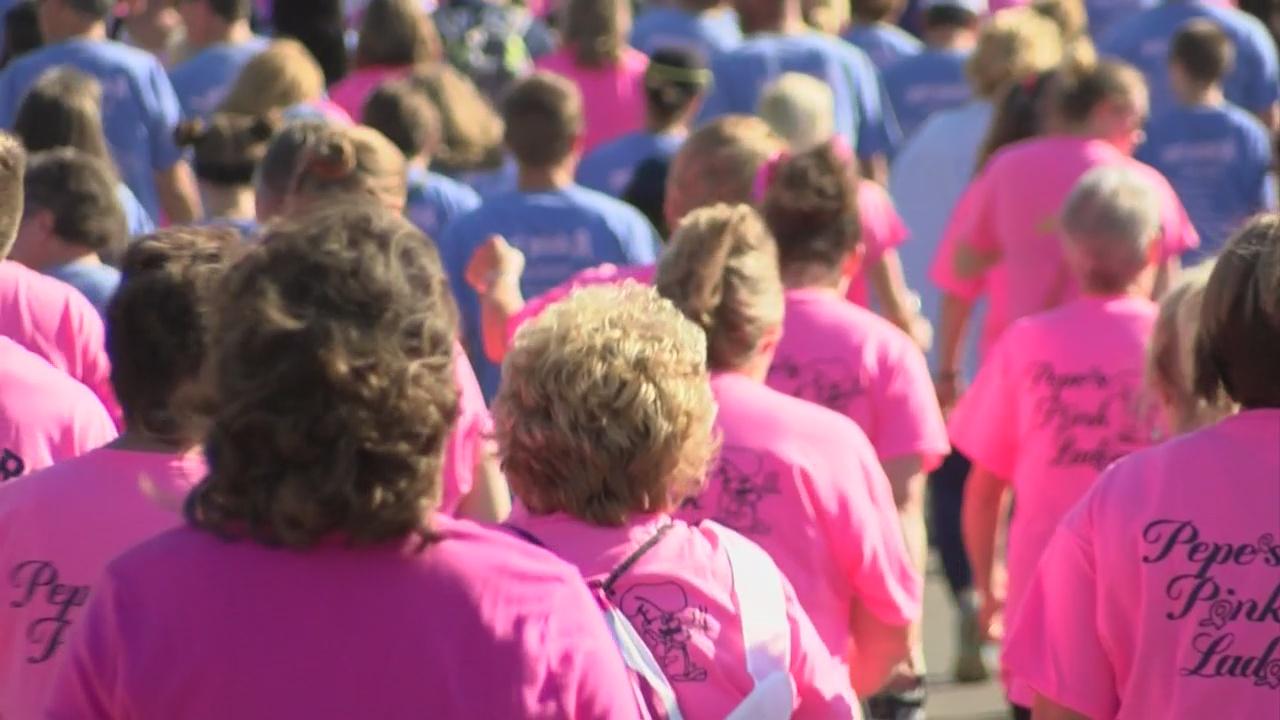 breast-cancer-walk-2_230947