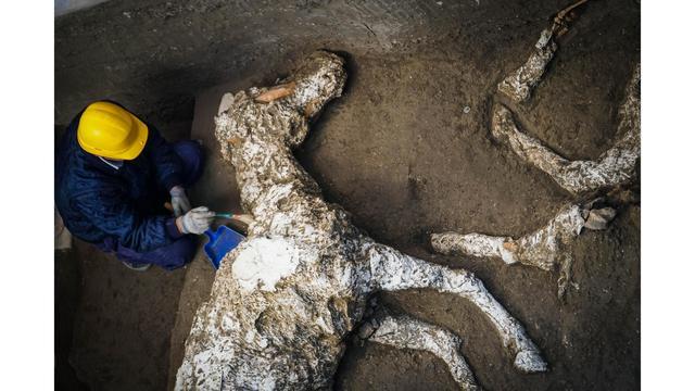 Italy Pompeii Discovery_1545606700037