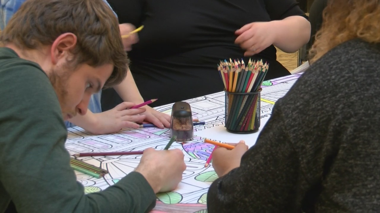 Fort Henry Mall hosts Color for a Cause event