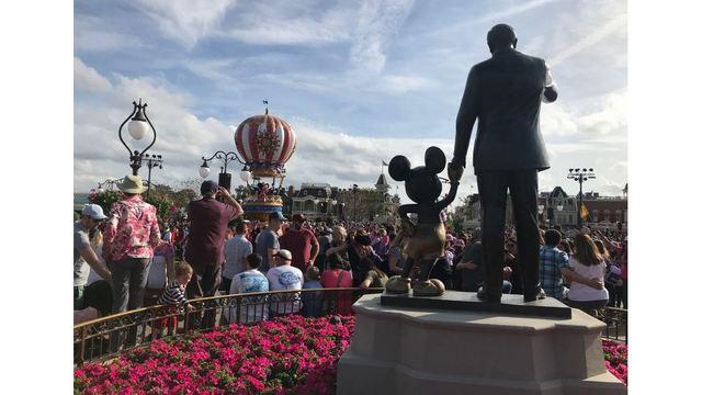 Disney World_1556534099009.jpg.jpg