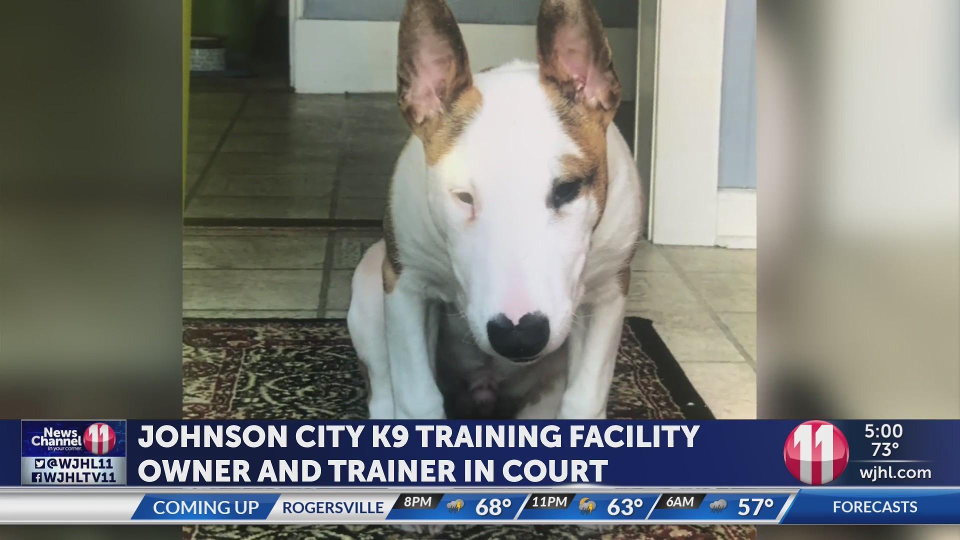 Off Leash K-9 Training dog death case to go to Washington County grand jury