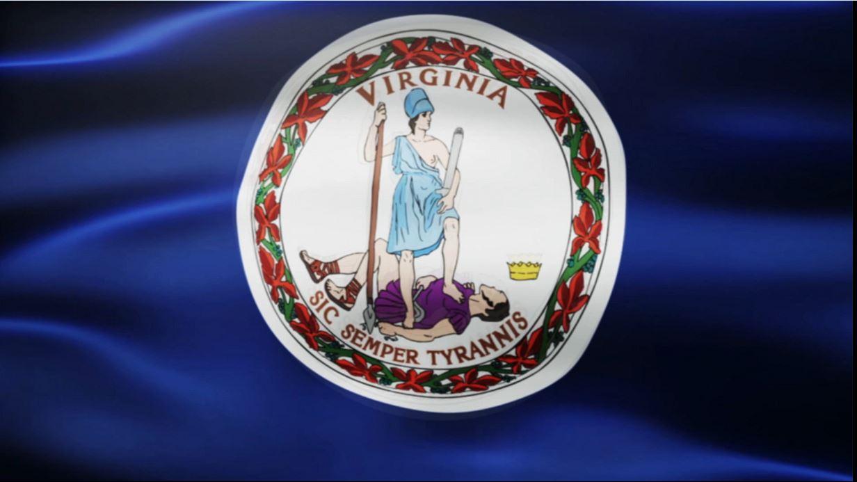 VA Flag_1560623490508.JPG.jpg