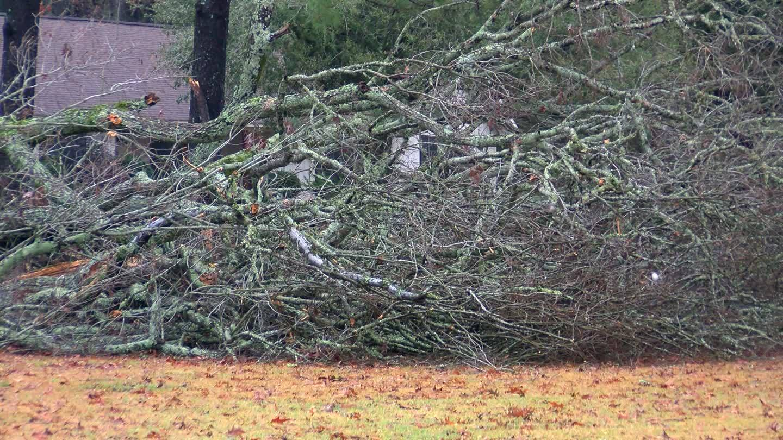 NWS_Assesses_Bentonia_Tornado_Damage_7_20181228221633
