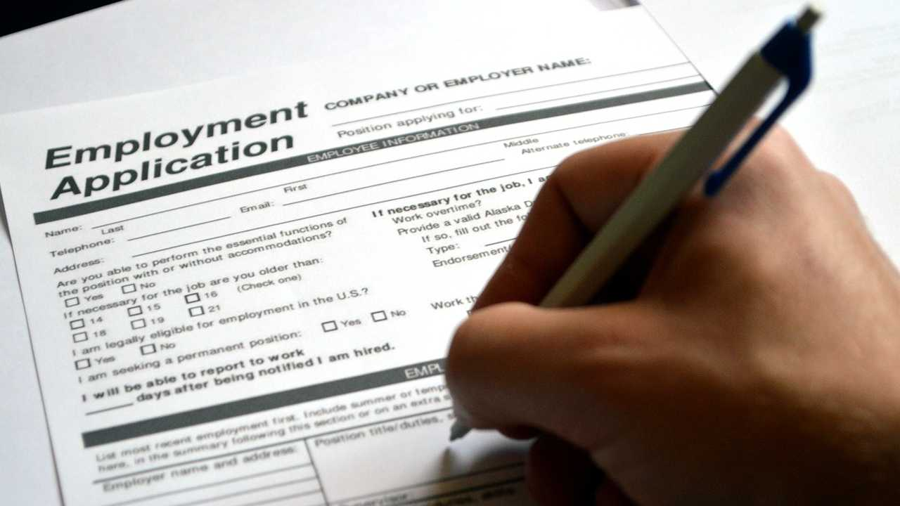 Job employment application generic
