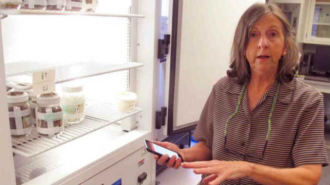 Susan Jones OSU entomologist