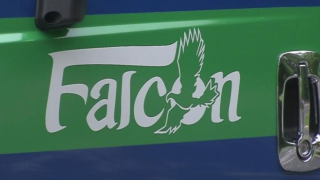 falcon-_1543267408286.jpg