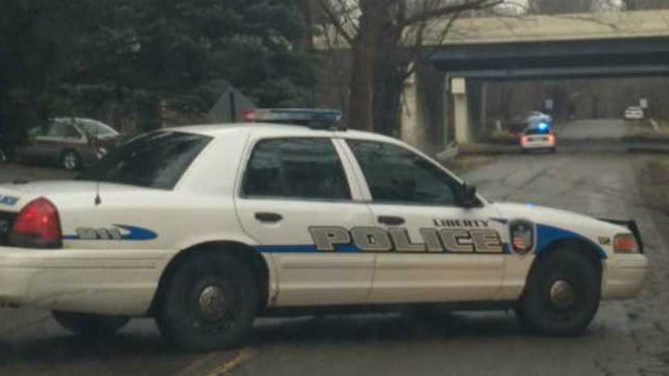 Liberty Police Car - Generic
