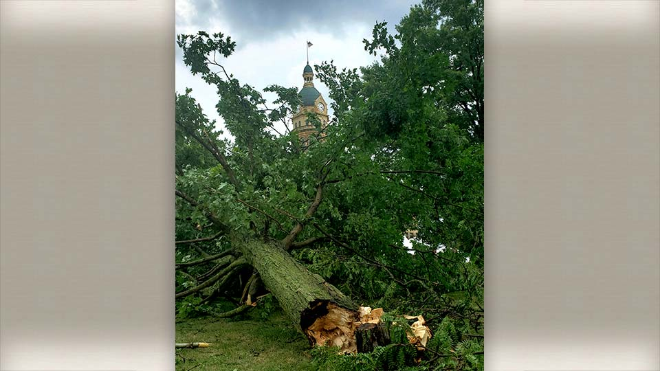 Tree down at Courthouse Square in Warren, Ohio from Lindsay.