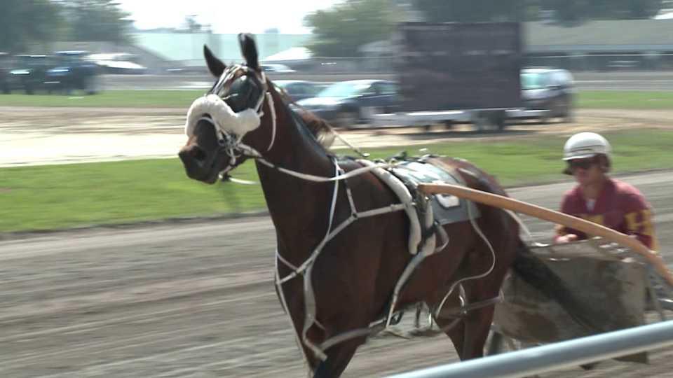 Harness horse racing, Canfield Fair