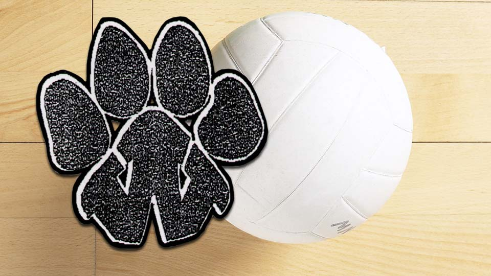 Wellsville Tigers volleyball