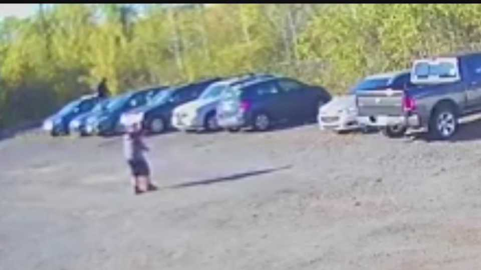 Suspects vandalizing cars in Howland