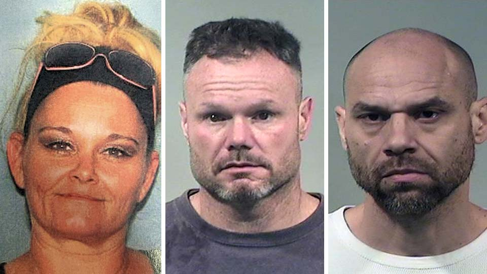 Laurie Brown, Charles Palmer and Lamar Sims, arrested during a drug sweep in Niles.