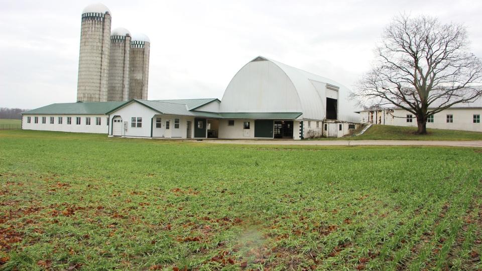 Nolt Dairy Farm, Ohio