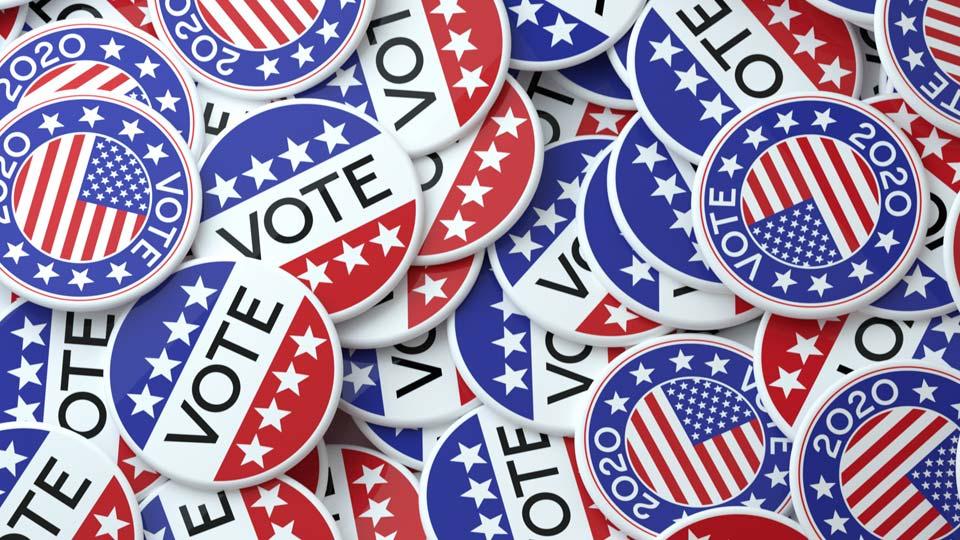 Election 2020, Vote
