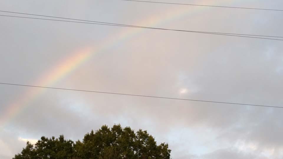 Rainbow, Shirley, Girard
