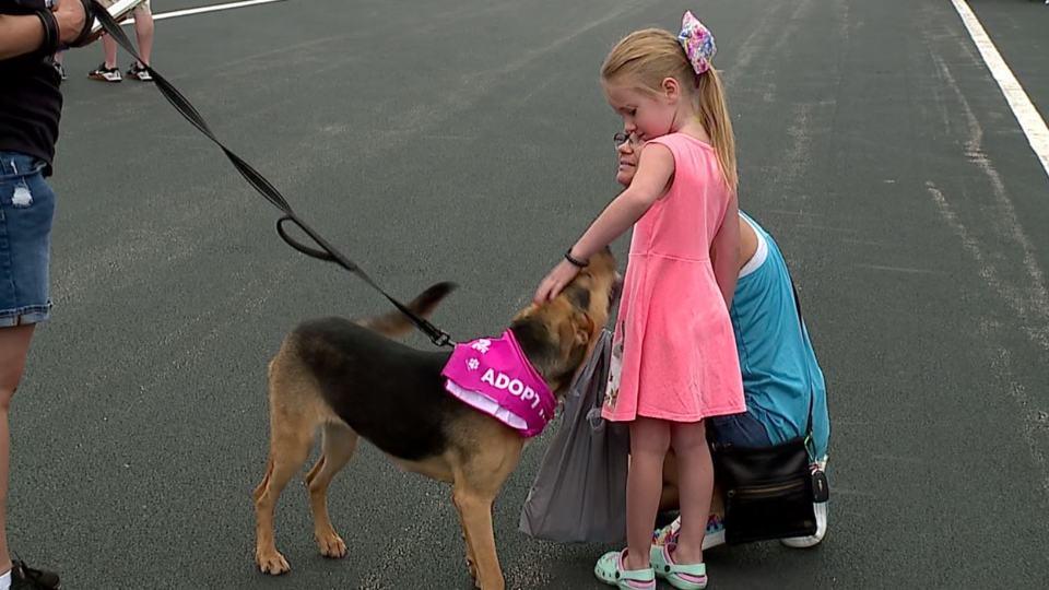 An animal adoption fundraiser was held Saturday at Greenwood's Hubbard Chevrolet.