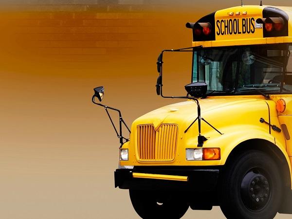 school bus_395504