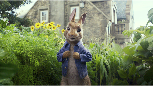 Peter Rabbit Allergy Backlash_1518469666606