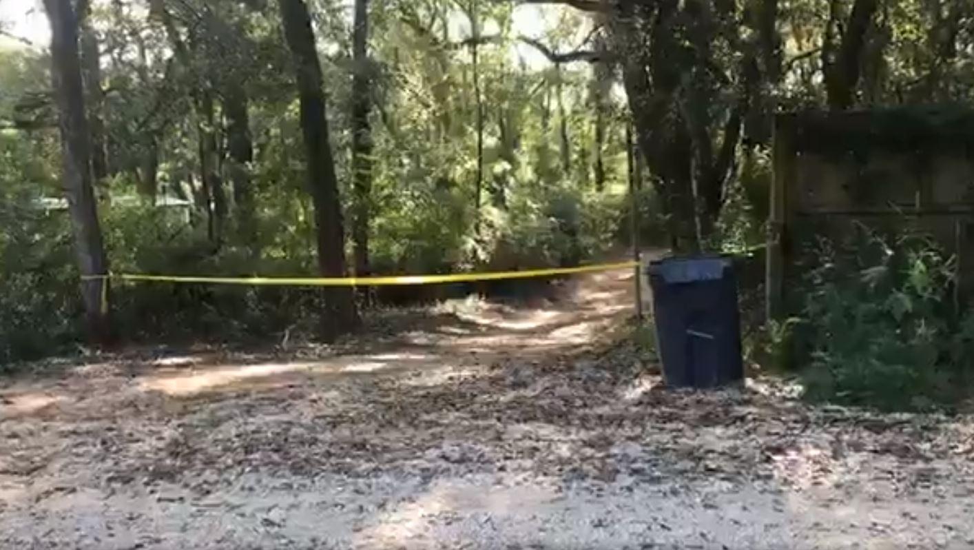 theodore crime scene_1536851656822.JPG.jpg