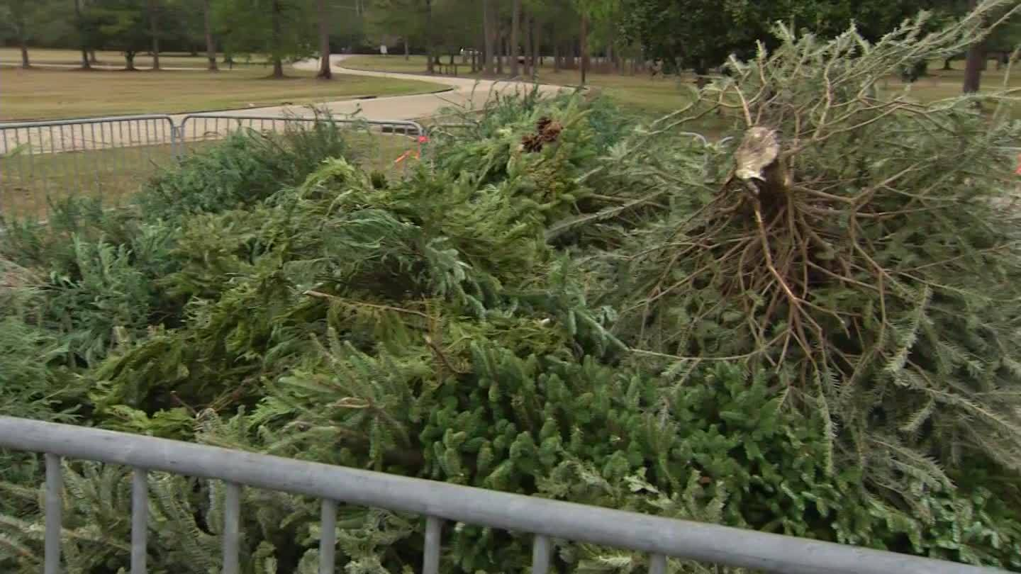 Mobile_Fire_Rescue__recycle_trees__don_t_5_20181227180247