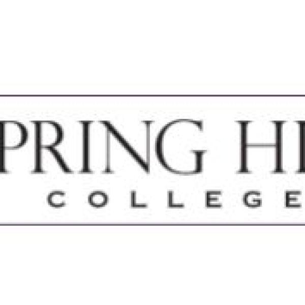 spring hill_1545256084423.JPG.jpg