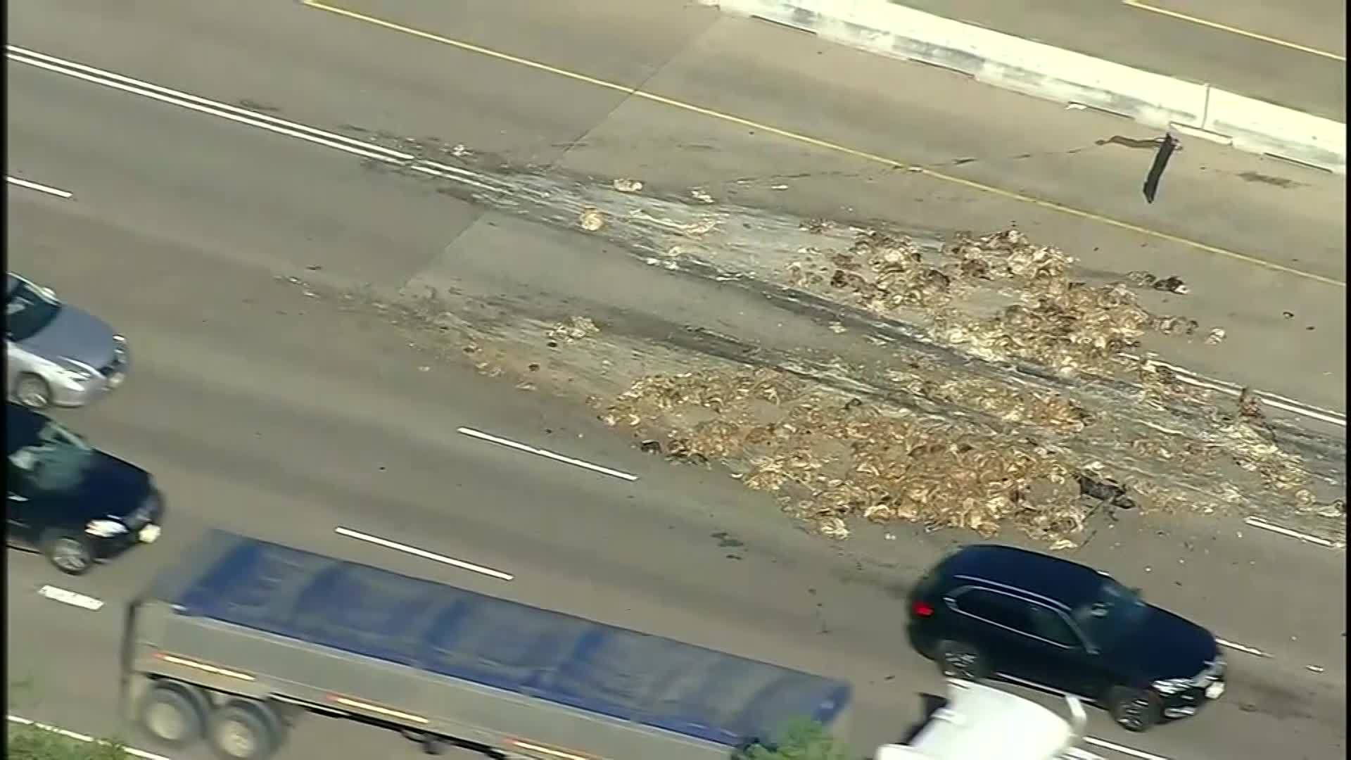 Animal remains spread over Texas road