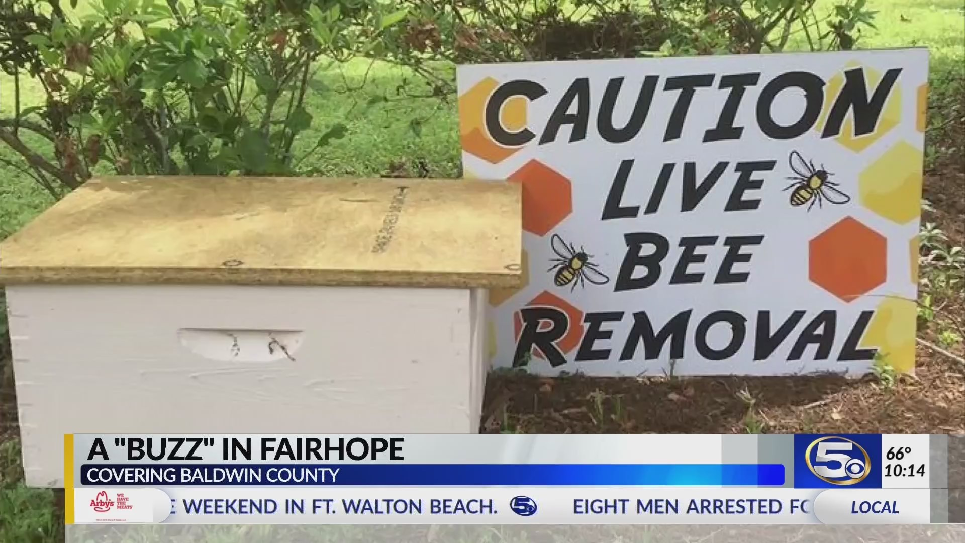 "VIDEO: Woman finds sign saying ""Caution, Live Bee Removal"" in front yard with no explanation"