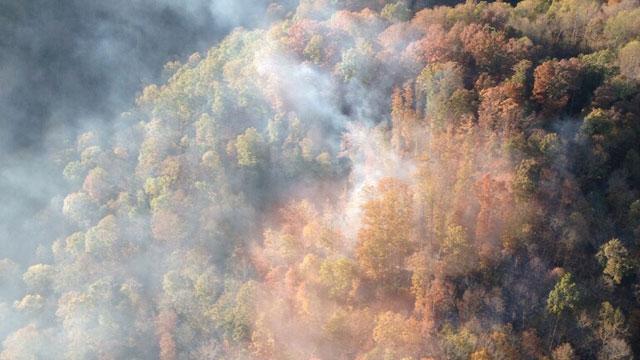 goodlettsville brush fire_334789
