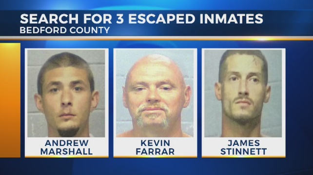Bedford escapees_453474