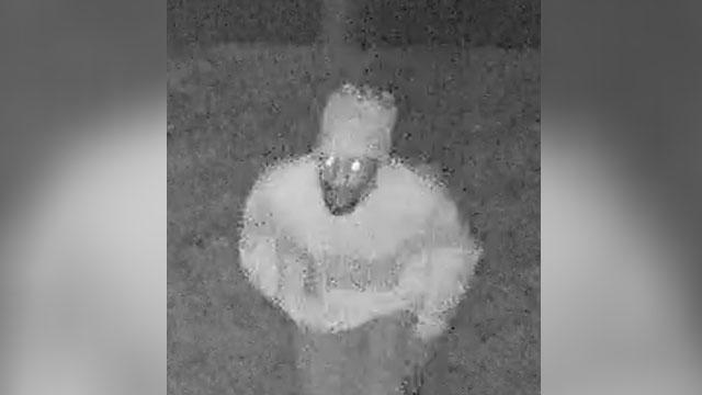 suspect in clarksville homicide, Christopher Lane_462276