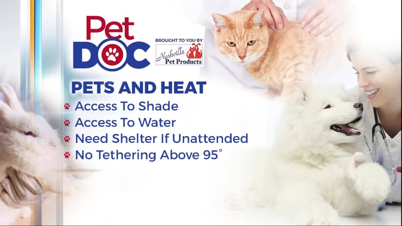 Pet Doc with Nikki Burdine: Protecting your pets from the heat
