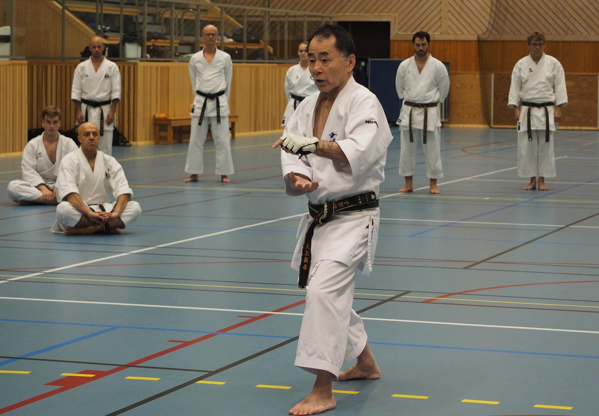 Shingo Ohgami, 8th dan JKF Wadokai, passed away