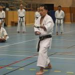 Shingo Ohgami