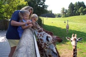 Binder Park Zoo hosts FUNfari June 18.