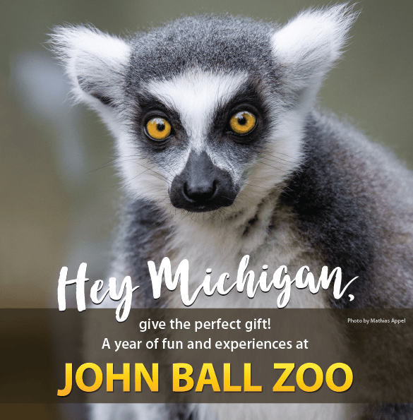 John Ball Zoo Offers Unique Wild Black Friday Sale Wyoming Kentwood Now