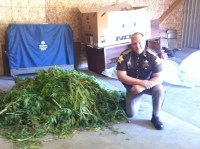 Starke County Deputy Bill Dulin and Detective Rob Olejniczak (not pictured) removed 60 marijuana plants from a property in Starke County