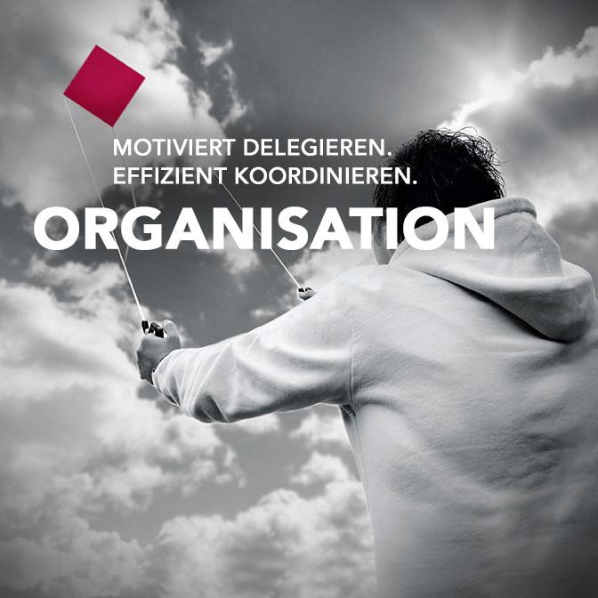 organisation2-1