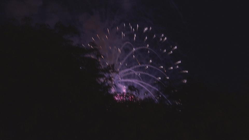 lansing fireworks_285326