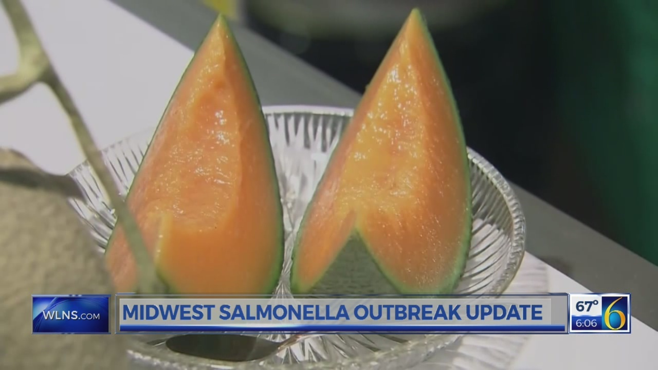 Salmonella outbreak update