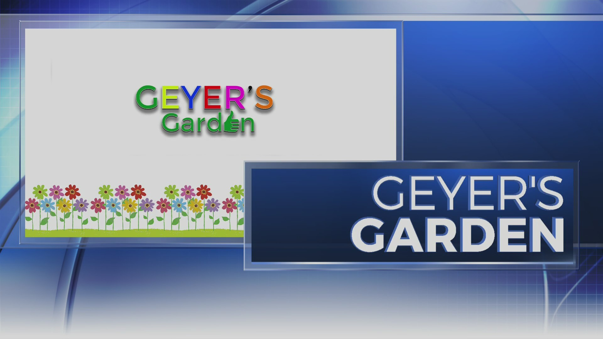 Geyer's Garden: Treating trees for gypsy moths