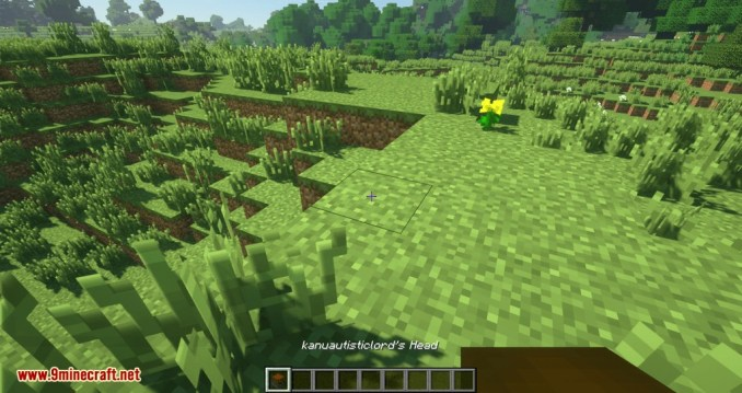 Just Player Head mod for minecraft 03