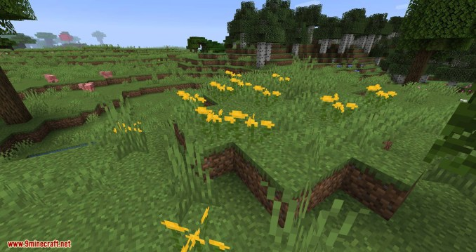 Woods and Mires mod for minecraft 04