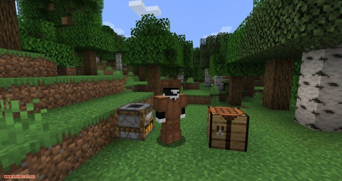Flesh 2 Leather mod for minecraft 12